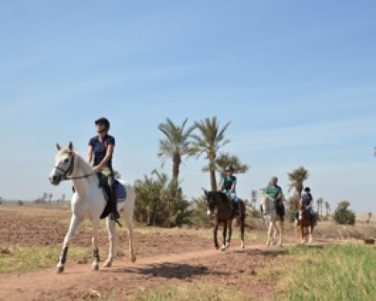 Excursion balade à cheval dans la palmeraie Marrakech